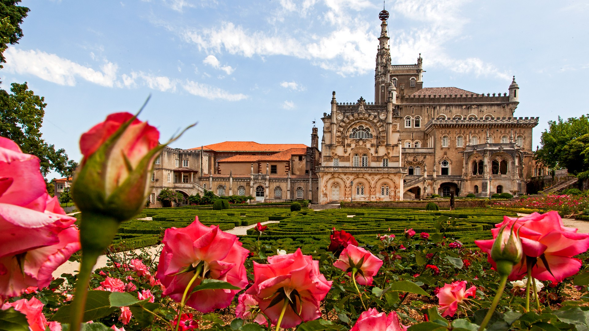Best Hotels in Portugal: Hotel Palácio do Bussaco best hotels in portugal Best Hotels in Portugal You Can't Miss Best Hotels in Portugal 4