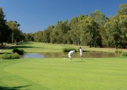 portuguese golf clubs Portuguese golf clubs: The perfect place for you to relax Portuguese golf clubs 3 1 250x177