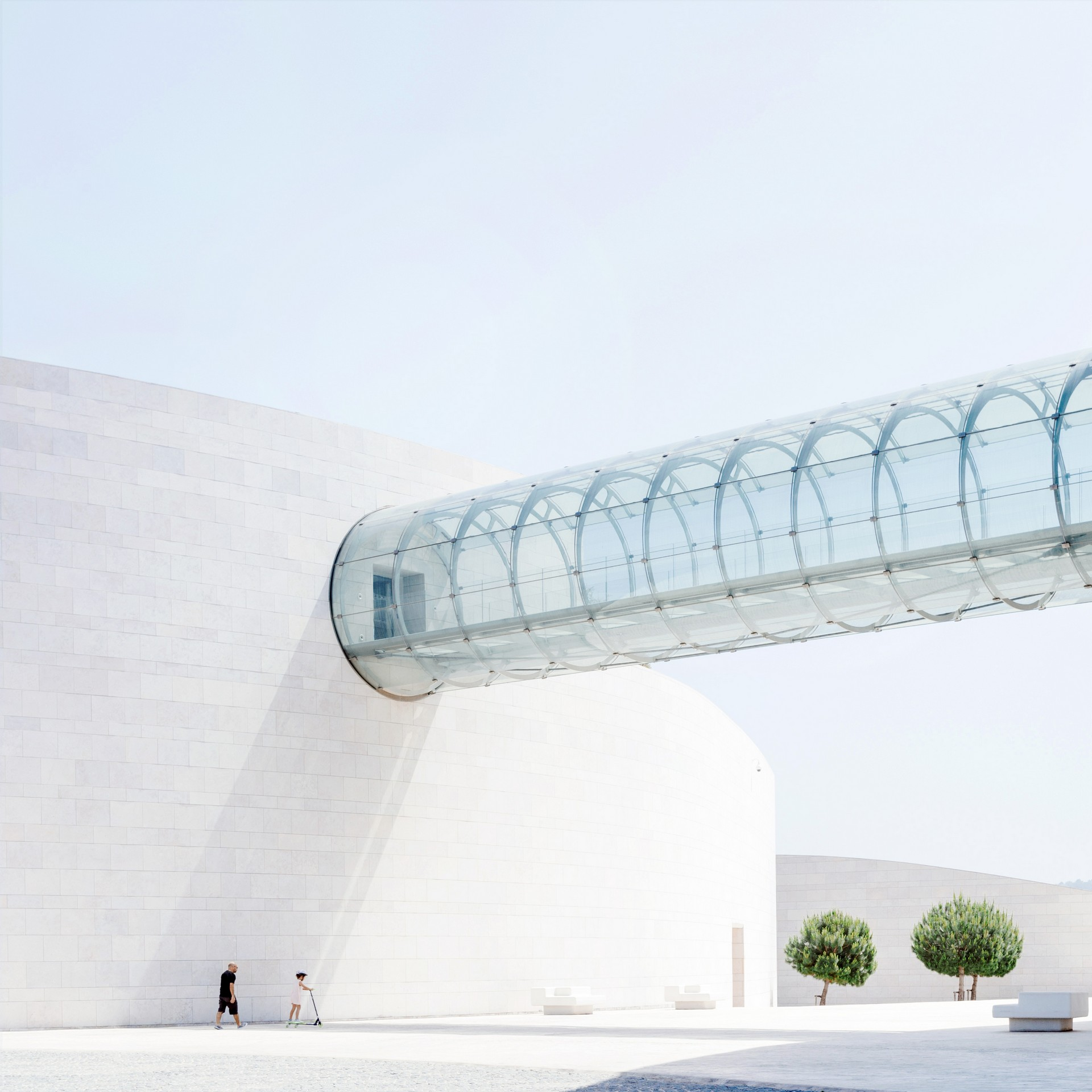 Champalimaud Foundation champalimaud foundation Champalimaud Foundation is the Centre For the Unknown Champalimaud Foundationl 7