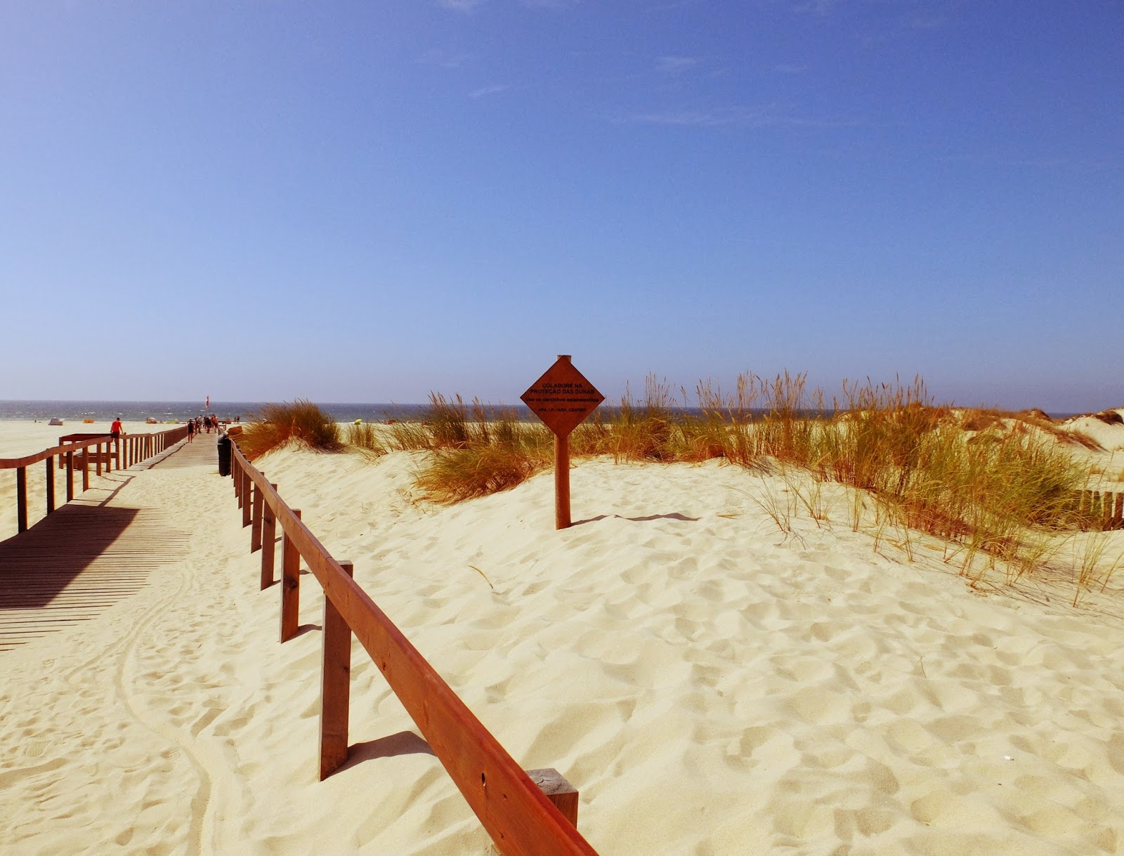 Best Portuguese Beaches To Enjoy This Summer best portuguese beaches Best Portuguese Beaches To Enjoy This Summer dunas s