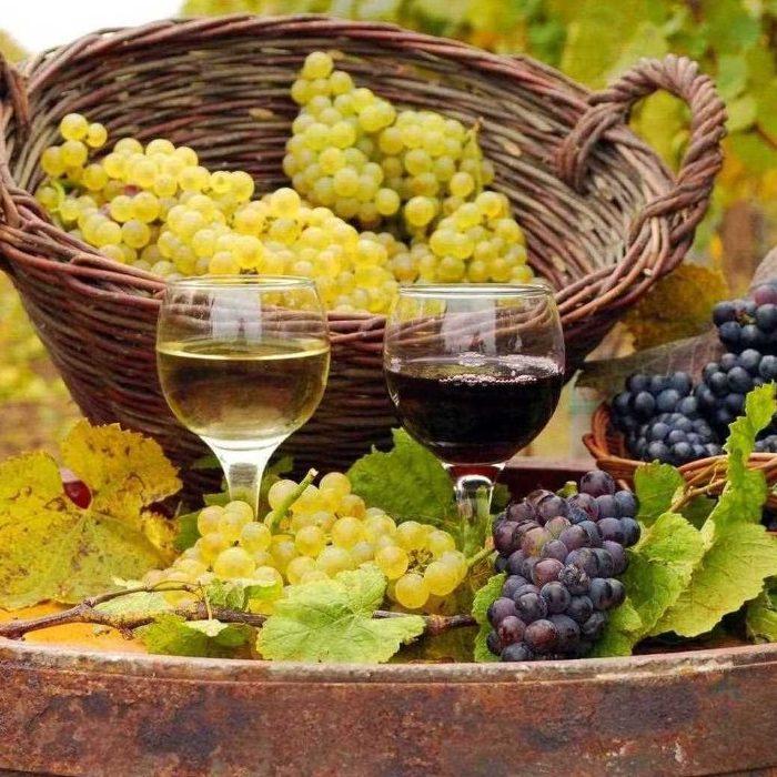 enotourism Enotourism: The Best Secrets For Wine Lovers enoturismo 1 700x700