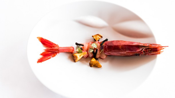 Portuguese Gastronomy: Best Luxury Restaurants in Portugal luxury restaurants Portuguese Gastronomy: Best Luxury Restaurants in Portugal casa de cha da boa nova prato 543a7