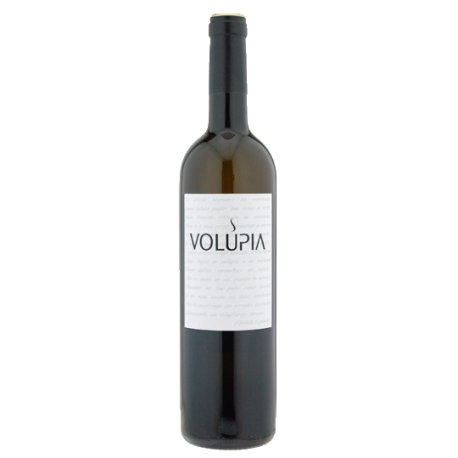 The Best Wines From Portugal  wines The Best Wines From Portugal volupia branco 2017