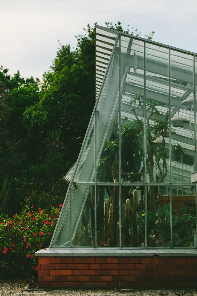 Porto's Botanic Garden Won The International Architecture Award 2019 botanic garden Porto's Botanic Garden Won The International Architecture Award 2019 Jardim Botanico Porto 4470 800