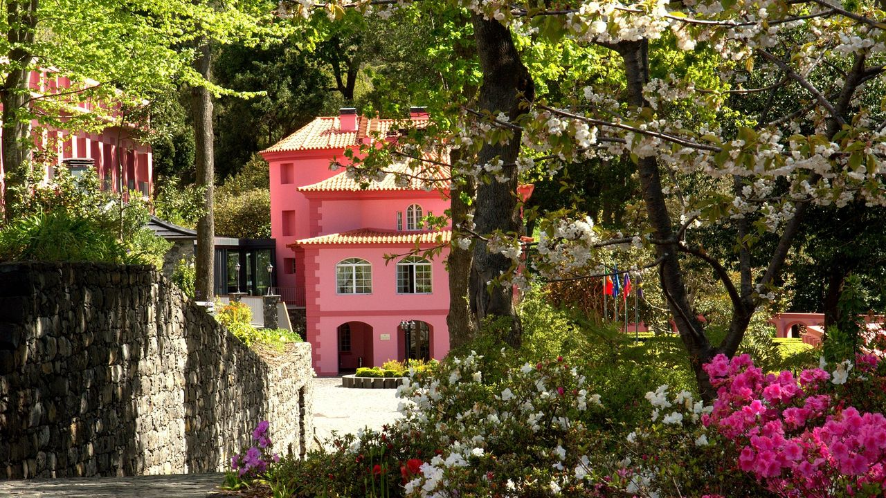 Secrets Itinerary: What To Do In The Amazing Madeira Island  madeira Secrets Itinerary: What To Do In The Amazing Madeira Island quinta da serra gallerycerejeiras em flor 1