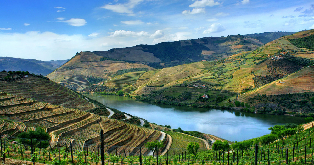 Secrets Itinerary: Top 5 Best Places In Douro Valley douro valley Secrets Itinerary: Top Places In The Douro Valley tour img 170484 148