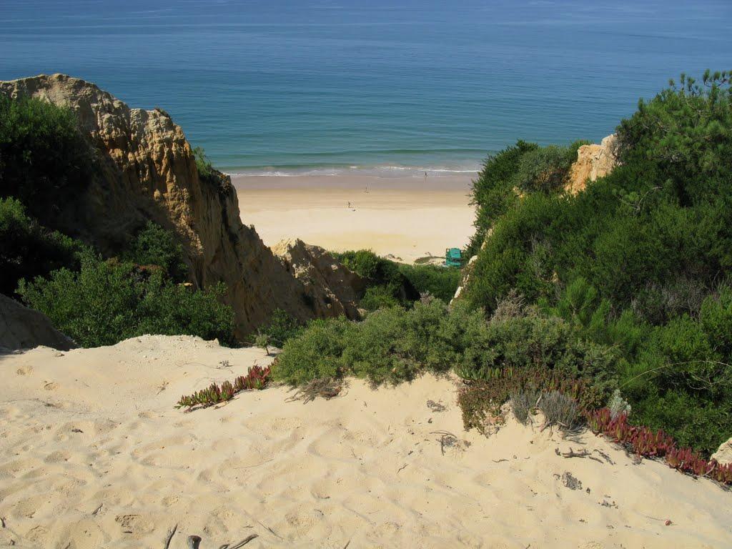 Secrets Tips: Costa da Caparica, The (Surf) Paradise Outside Lisbon  costa da caparica Secrets Tips: Costa da Caparica, The (Surf) Paradise Outside Lisbon 60987115