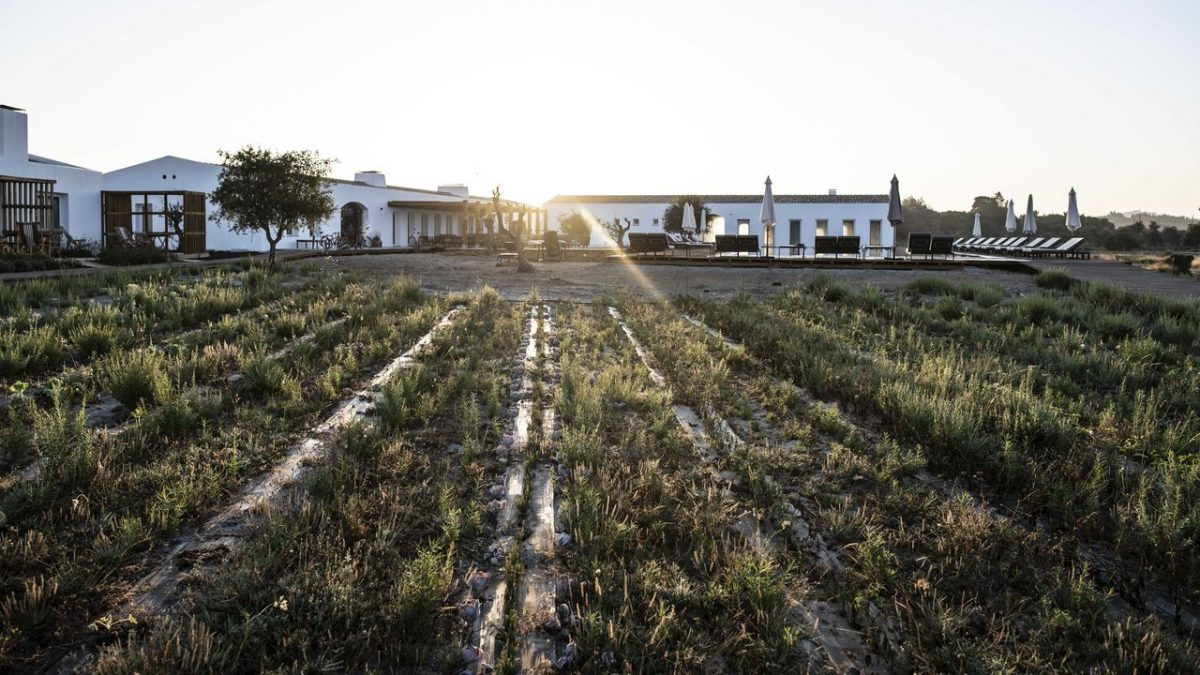 Alentejo: Rest Between Mountains and the Sea alentejo Alentejo: Rest Between Mountains and the Sea craveiral farmhouse by belong staying and feeling gallerycraveiral portugal photo martin kaufmann dsc9360 e1566473551820