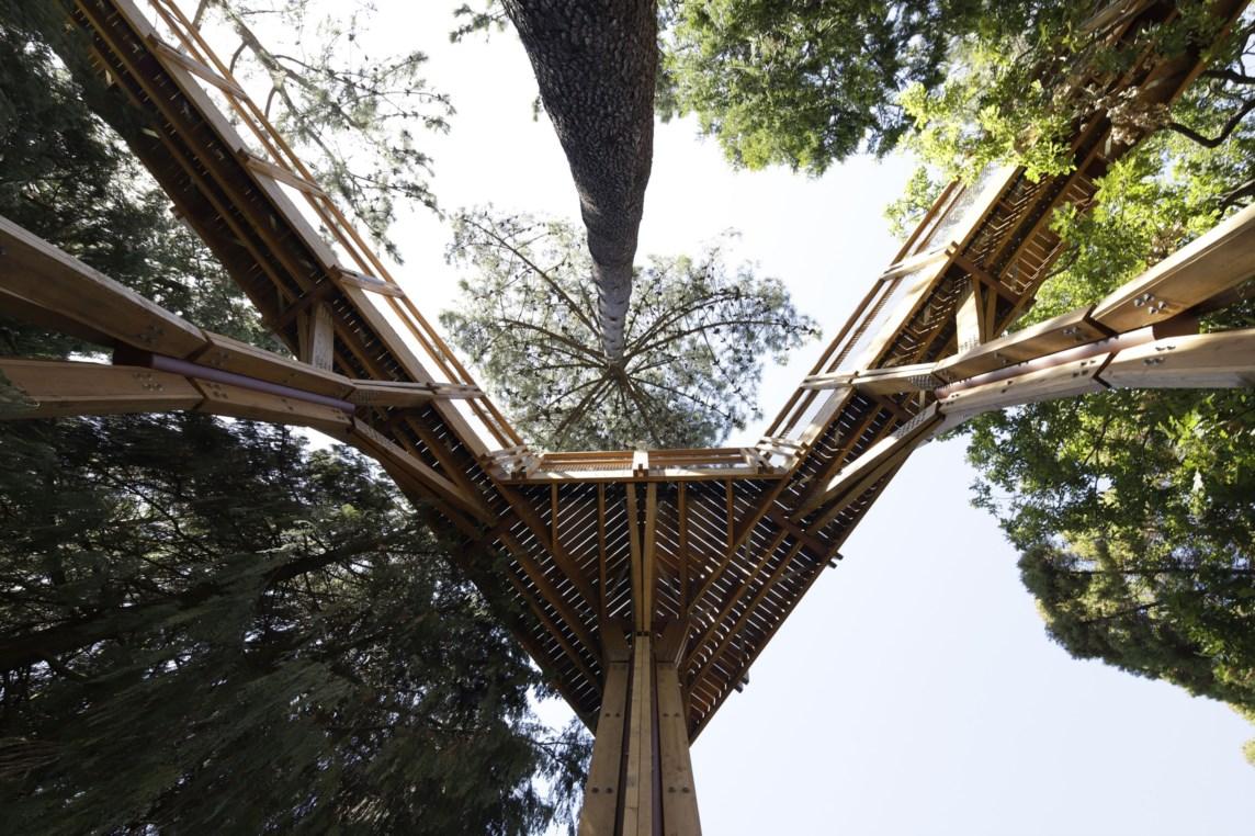 Serralves Bets On Tree-Lined Walkway serralves bets on tree-lined walkway Serralves Bets On Tree-Lined Walkway 1392800