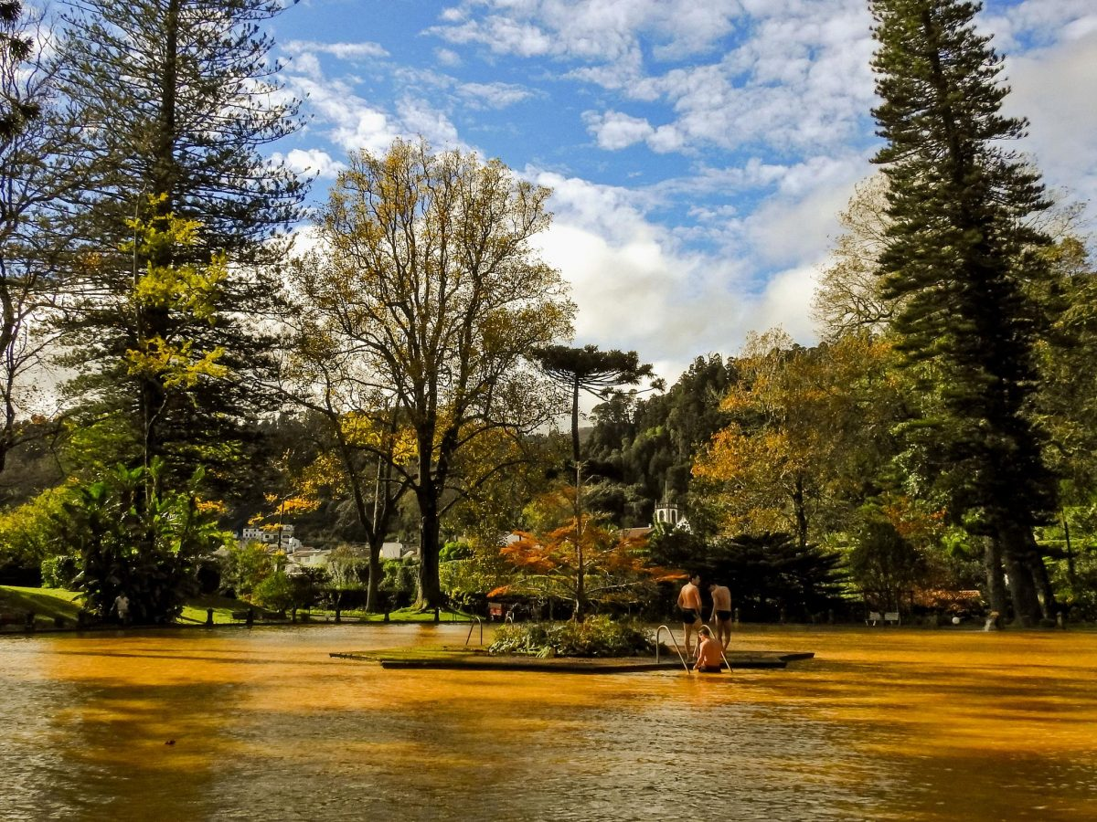 Secrets Places: Terra Nostra Is One Of The Most Beautiful Gardens In The World (... And Is In The Azores) azores Secrets Places: Terra Nostra Is One Of The Most Beautiful Gardens In The World (… And Is In The Azores) Terra Nostra 1 e1568635063286