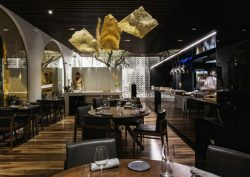 loco restaurant Loco Restaurant Is Pushing The Boundaries of Culinary Art feat 7 250x177