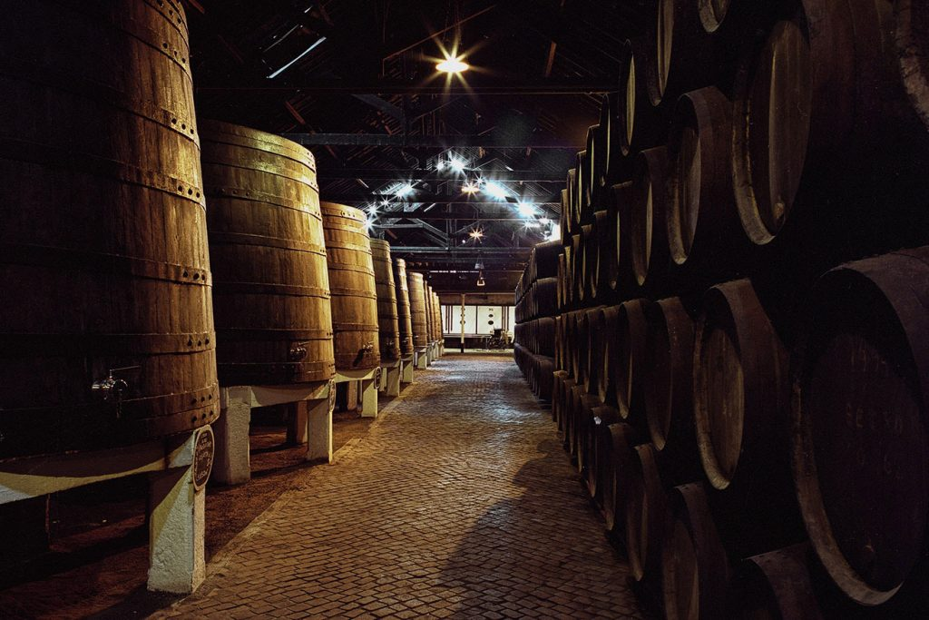 Secrets Tips: The Port Wine Cellars You Must Know port wine Secrets Tips: The Port Wine Cellars You Must Know Secrets Tips The Port Wine Cellars You Must Know 7 1024x683