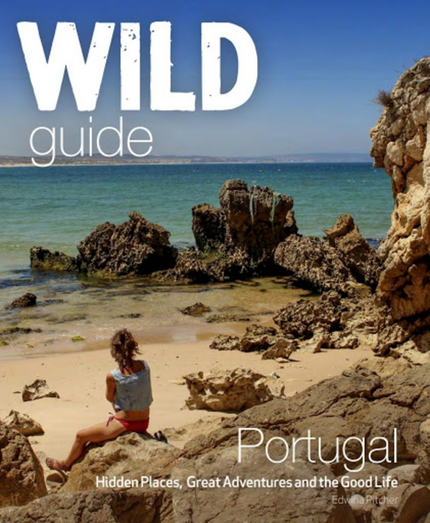 Stay At Home And Discover Portugal With These 5 Amazing Books portugal Stay At Home And Discover Portugal With These 5 Amazing Books stay at home and discover portugal with these 5 amazing books 4 842x1024